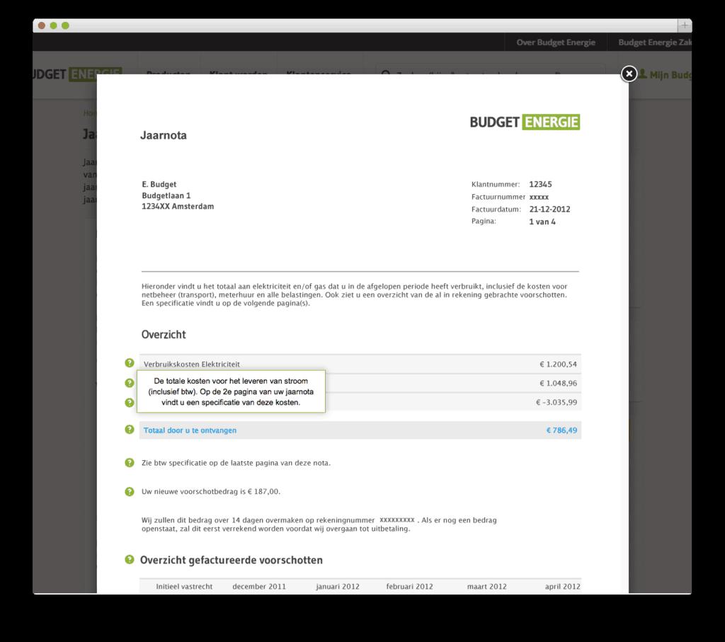 Budget Energie website voorbeeld