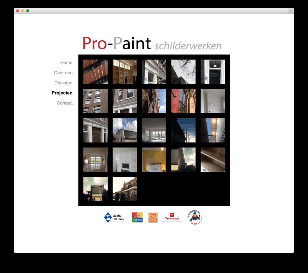 Pro-Paint
